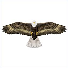 "Bird scaring kite, 48"" eagle"