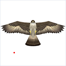 "Bird scaring kite, 48"" falcon"