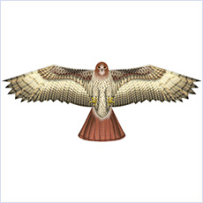 "Bird scaring kite, 48"" hawk"