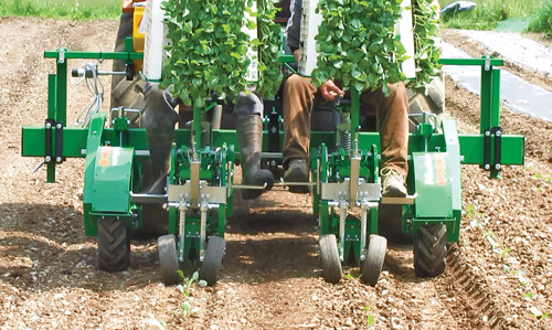 2-Row Plantec transplanter
