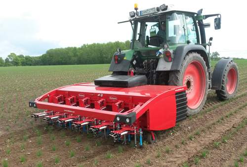 Steketee IC weeder