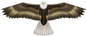 Bald Eagle bird scare kite